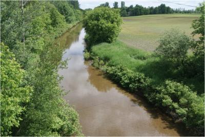 Le rapport de caractérisation des bandes riveraines agricoles est maintenant disponible !