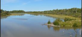 Débat pré-électoral sur les enjeux de l'eau en Abitibi- Témiscamingue